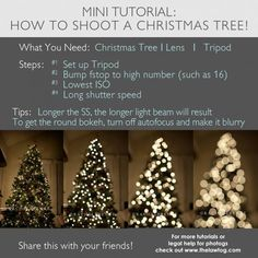 How to shoot Christmas Tree Lights. http://www.thelawtog.com/how-to-shoot-christmas-tree-lights/