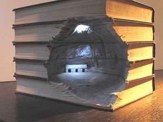 Arte em livros ( literalmente ) I