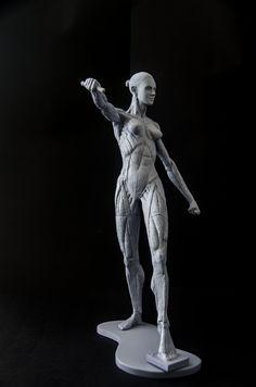 E eis que Iracema vem ao mundo! Modelo anatômico, pintado na cor cinza neutro, ideal para o estudo anatômico feminino, recriado fielmente a partir de estudos e modelos vivos, esculpido com riqueza de detalhes, mostrando os músculos. Perfeito para referência visual, ensino ou estudo.