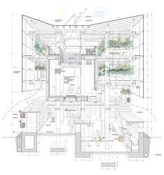 54c9b304e58ece5c5e00021e_nest-we-grow-college-of-environmental-design-uc-berkeley-kengo-kuma-associates_sectional_perspective.png (2000×2133)