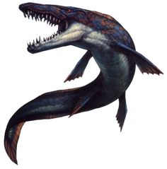 Mosasaur. A marine reptile from the age of the dinosaurs.