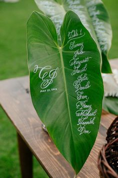 Tropical Leaves as Wedding Signs for Destination Weddings