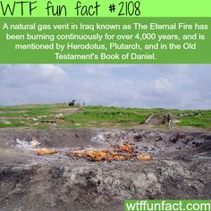 The Eternal Fire, Natural gas vent in Iraq - WTF fun facts Wtf Fun Facts, True Facts, Funny Facts, Random Facts, Odd Facts, Strange Facts, Random Stuff, Crazy Facts, Funny Memes