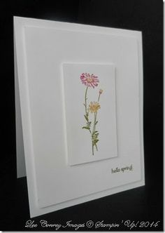 2014 Springtime Hello Stamp Set  c#133415 $10.95 w#133412 $13.95 Whisper White Card Stock #100730 $8.50 Markers Old Olive, Melon Mambo, Pumpkin Pie and Daffodil Delight.