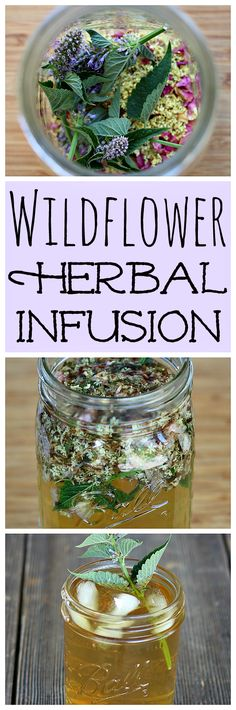 """Make this recipe for """"Flower Power"""" Wildflower Herbal Infusion Tea from the Foraging & Feasting book!"""