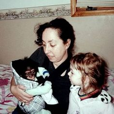 Aya Katz is a writer who is raising a chimpanzee named Bow.  Here is a picture of when he was a baby.