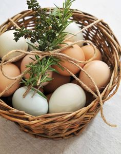 WHAT A CUTE WAY TO SHARE EGGS WITH THE NEIGHBORS