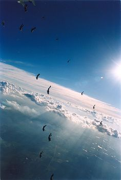 Skydive mergulho em ala (by Rick Neves) Skydiving Pictures, Beautiful World, Beautiful Places, Base Jumping, Bungee Jumping, Kayak, Paragliding, Extreme Sports, Plein Air