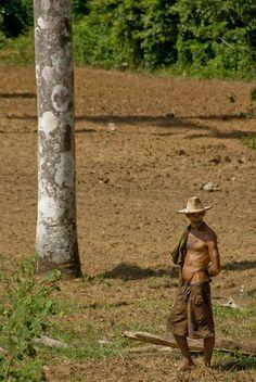 Landwirt | #cuba #cubajunky http://www.cuba-junky.com