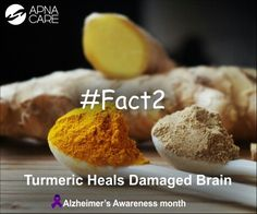 Do You Know? #Fact2  New research reveals how a simple Spice - #Termeric might contribute to the regeneration of the damaged brain.   If you need help finding trained professionals to care for an Alzheimer's patient, call ApnaCare at +91 (080) 30752584 now. Shop now at https://apnacare-eshop.in/collections/best-sellers/products/alzheimer-s-dementia-care-kit  #Alzheimers #dementia #homehealthcare #healthcare #elderlycare #endalz #neurology #awareness #turmeric #brain #neurons…