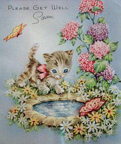 kitty by pond