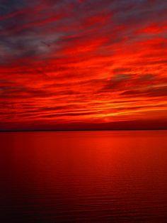 Red | Rosso | Rouge | Rojo | Rød | 赤 | Vermelho | Color | Colour | Texture | Form | sunset