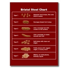 Bristol Stool Chart White Light T-Shirt Bristol Stool Chart Dark T-Shirt by - CafePress Blue Velvet Dining Chairs, Wooden Dining Room Chairs, Mat Online, Funny Posters, Bristol Stool, Poster Prints, Surface, Stool Chart, Make It Yourself