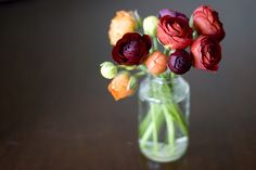 ranunculus, my new flower obsession