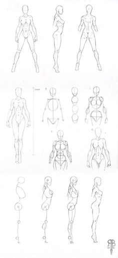 61 Ideas for drawing tutorial human figures character design Body Drawing, Anatomy Drawing, Life Drawing, Figure Drawing, Human Anatomy, Anatomy Study, Body Anatomy, Drawing Art, Drawing Skills