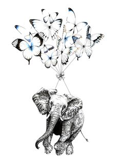 Pen, Ink and Watercolour Elephant and Blue Butterfly Illustration.