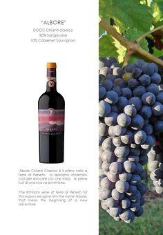 """""""ALBORE""""  DOGC Chianti classico  90% Sangiovese 10% Cabernet Sauvignon"""