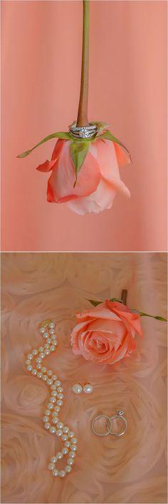 Wedding ring on coral rose ~ Photo: Jenna Christine Photography. Love the photo! Post Wedding, Wedding Blog, Wedding Photos, Dream Wedding, Wedding Rings, Wedding Ideas, Orange Wedding Flowers, Wedding Colors, Colombian Wedding