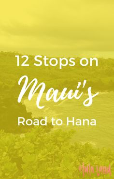 12 amazing stops on the Road to Hana including waterfalls, a black and red sand beach, and a bamboo forest.