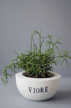 Brave Set Mit 3 Klein Terrakotta Pflanztöpfe Ideal Muttertag Gartenarbeit Geschenkidee Home & Garden Yard, Garden & Outdoor Living