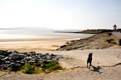Burry Port Wales, Fathers, Places Ive Been, Most Beautiful, Country Roads, Earth, Photos, Outdoor, Landscape