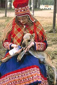 saami. Because of centuries of I mix with later groups Sami are a mix of faces. There are around 40,000 to 70,000 Sami in Norway,20,000in Sweden , <7000 in Finland , and <2000 in Russia. These numbers are for part Sami people not those who Speke Sami languages.