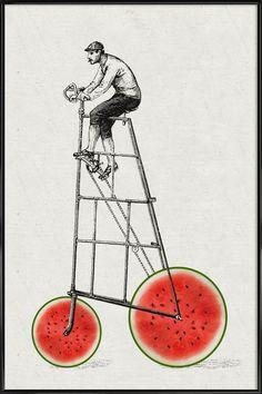 Melonenradler en Affiche sous cadre standard par Amy & Kurt   JUNIQE