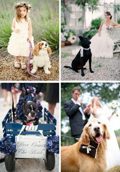 Wedding trend - dogs at weddings