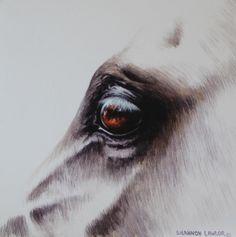Crystal #horses #equine #art #Shannon Lawlor www.shannonlawlor.com