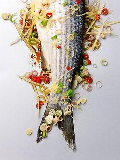 Fish / Rob White