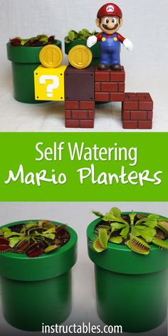Pair it with carnivorous plants and fun magnetic building blocks! Flower Bookey, Flower Film, Flower Names, Cactus Flower, Cactus Plants, Flower Pots, Runner Tips, Mini Cactus, Flower Meanings
