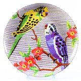 Budgie plate from Douglas and Hope Parakeets As Pets, Budgies, Home Decor Accessories, Tech Accessories, I Like Birds, Arts And Crafts, Diy Crafts, Beautiful Table Settings, Plates And Bowls