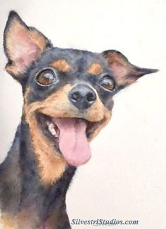 """""""Bonnie"""", watercolor dog (Toy Terrier) painting by animal artist Teresa Silvestri.  Original sold, but fine art prints & cards available.   Photo reference thanks to Tracy Lian Miles."""
