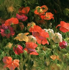 marney ward paintings - Google Search