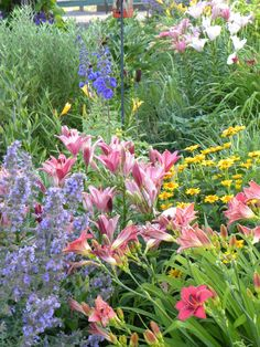 Zone Perennial Edible Garden Design on shade gardening zone 3, landscaping zone 3, roses zone 3,