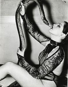 Стриптиз со змеей кристал