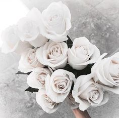 Image de flowers, rose, and white