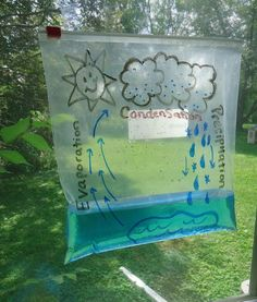 What& Up with the Water Cycle? Sachunterricht in der Grundschule: Wasserkreislauf sichtbar machen The post What& Up with the Water Cycle? Kid Science, 4th Grade Science, Kindergarten Science, Science Classroom, Science Fair, Teaching Science, Preschool Activities, Water Cycle Activities, Water Crafts Preschool