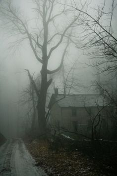 eerie landscape photograph fo house and tree in fog Spooky Places, Haunted Places, Abandoned Houses, Abandoned Places, Belle Photo, Mists, Art Photography, Landscape Photography, Creepy Photography