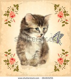 Vintage card with fluffy kitten and butterfly.  Imitation of watercolor painting.  - stock photo