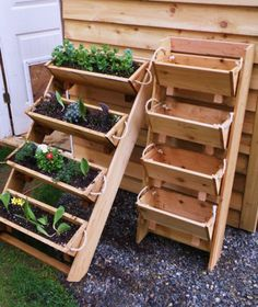 herb garden, cute and practicle...@Sara Eriksson Eriksson Yaron I want to be like you! :)