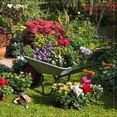É impossível pensar em jardim sem imaginar lindas flores. E quem gosta de reciclagem pode se inspirar e usar a criatividade na área externa, como essa ideia com carrinho de mão.