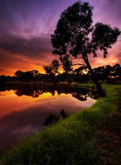 Amazing lavender-gold Sunset