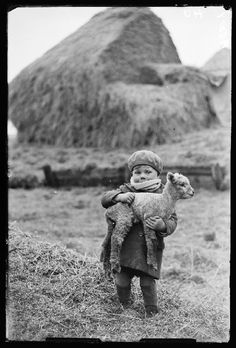 Boy carrying a lamb. It's almost as big as he is! 1932 by James Jarché Daily Herald Archive
