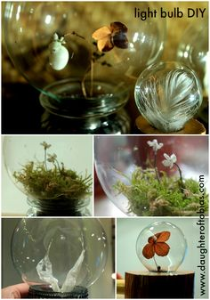 DIY light bulb gifts, recycling at its best.