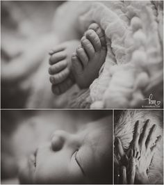 hands and feet of baby Newborn Photography Props, Newborn Session, Newborn Photographer, Photography Ideas, Pregnancy Photos, Little Babies, Maternity, Hands, Baby