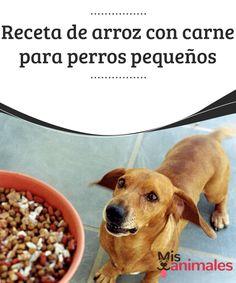 Receta de #arroz con carne para perros #pequeños  Si estás evaluando la opción de darle una alimentación #natural y casera a tu mascota, o simplemente quieres agasajarla con un plato especial, te #presentamos una receta de arroz con carne para perros pequeños.
