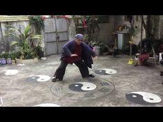 Daniel Mitel filming Master Zhang doing Baguazhang in Zhuhai, China - YouTube
