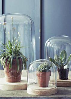 http://100ideesdeco.marieclairemaison.com/,sublimer-ses-fleurs-autrement-nos-inspirations,521982.asp