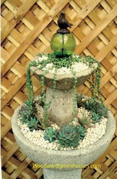 another lovely fountain - like the birdie decoration on the top